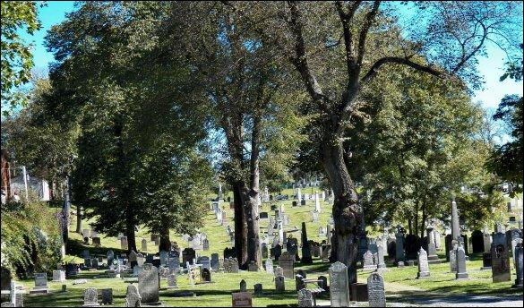 Holy Cross Cemetery Stones